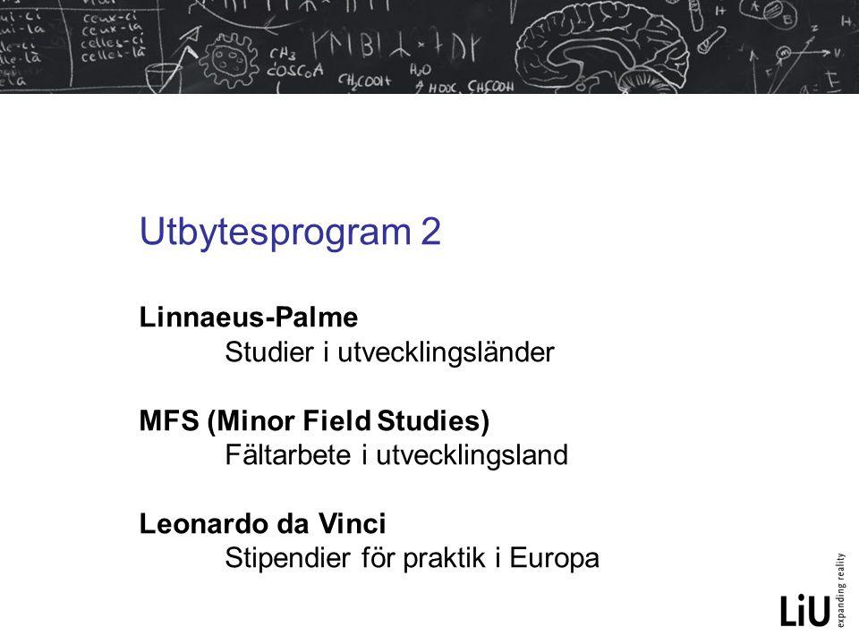 Utbytesprogram 2 Linnaeus-Palme Studier i utvecklingsländer