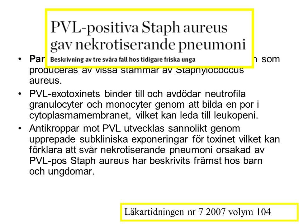 PVL-exotoxinets Panton–Valentine-leukocidin (PVL) är ett exotoxin som produceras av vissa stammar av Staphylococcus aureus.