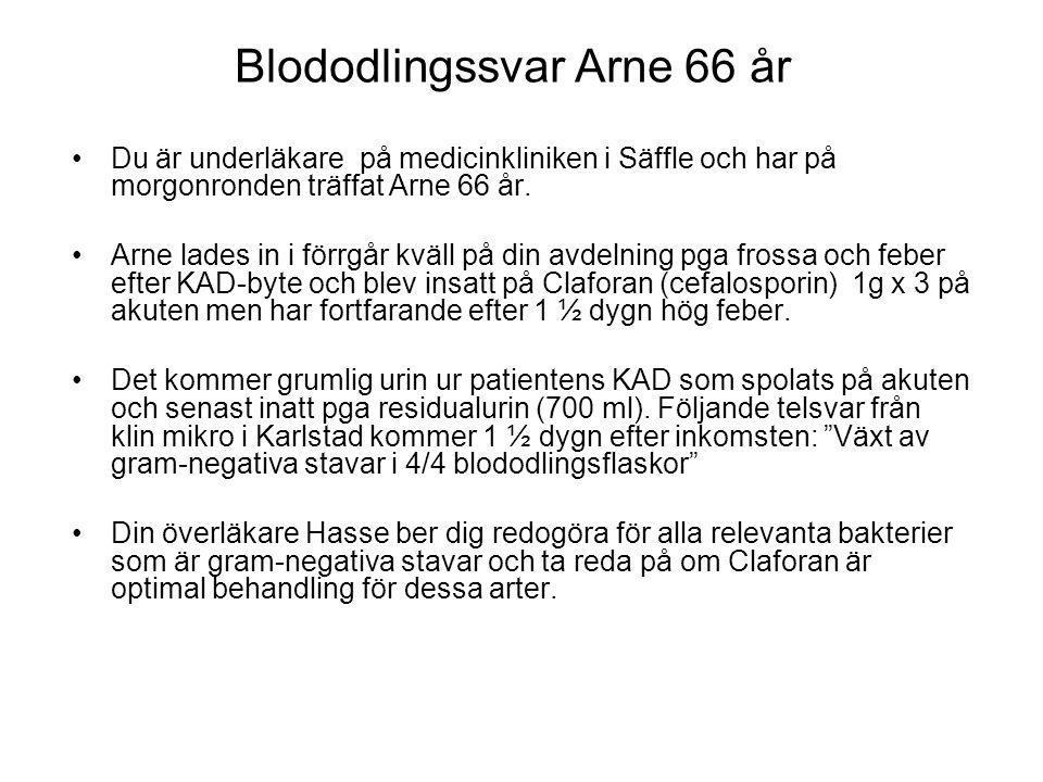 Blododlingssvar Arne 66 år