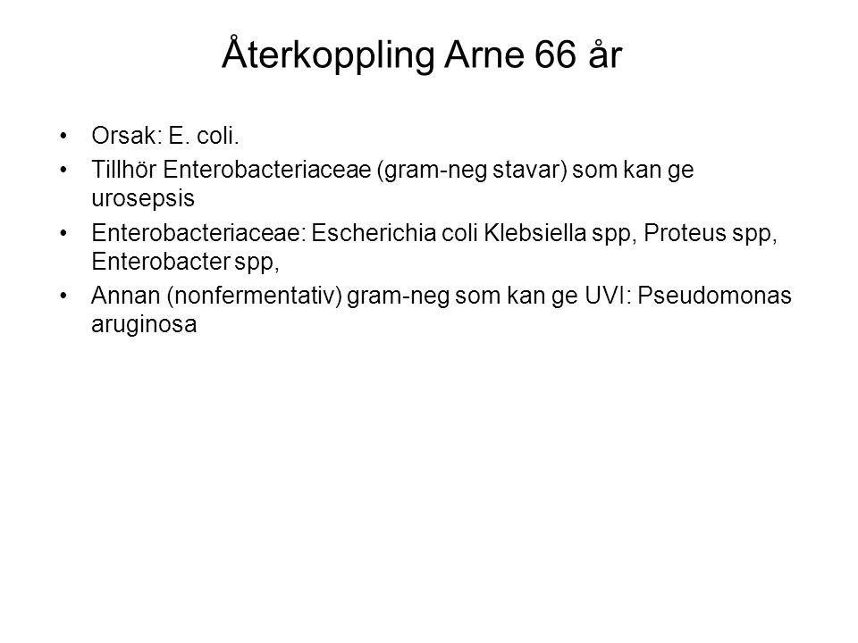 Återkoppling Arne 66 år Orsak: E. coli.