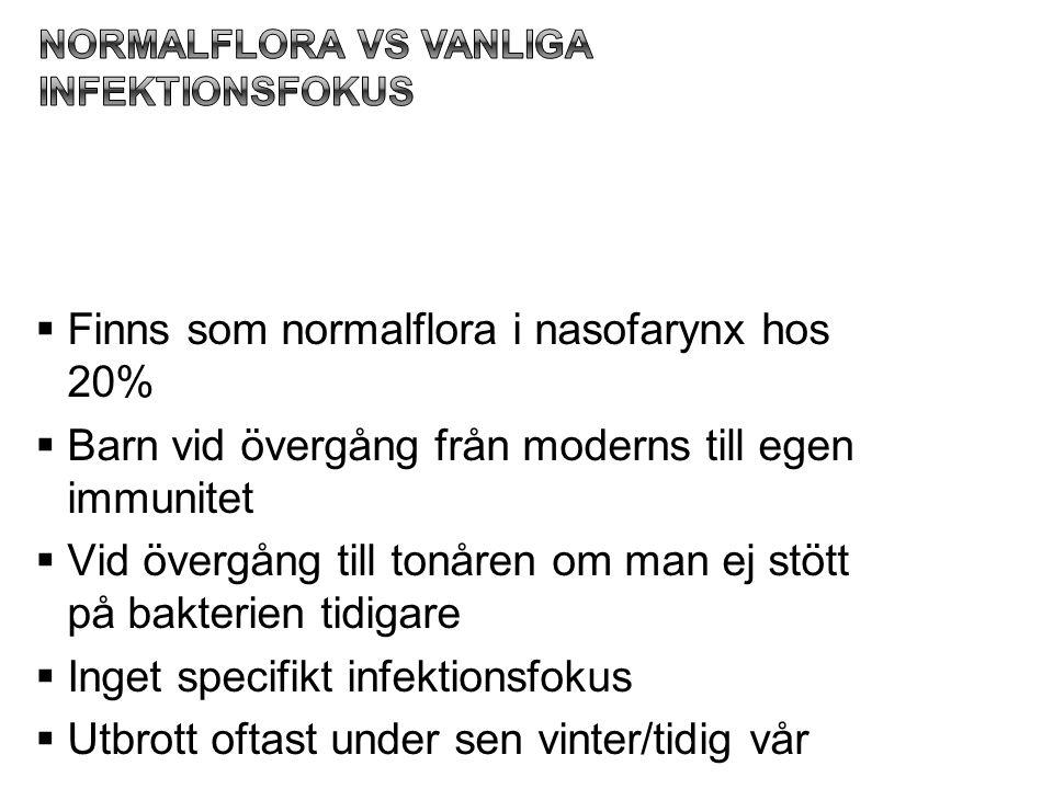 Normalflora vs vanliga infektionsfokus