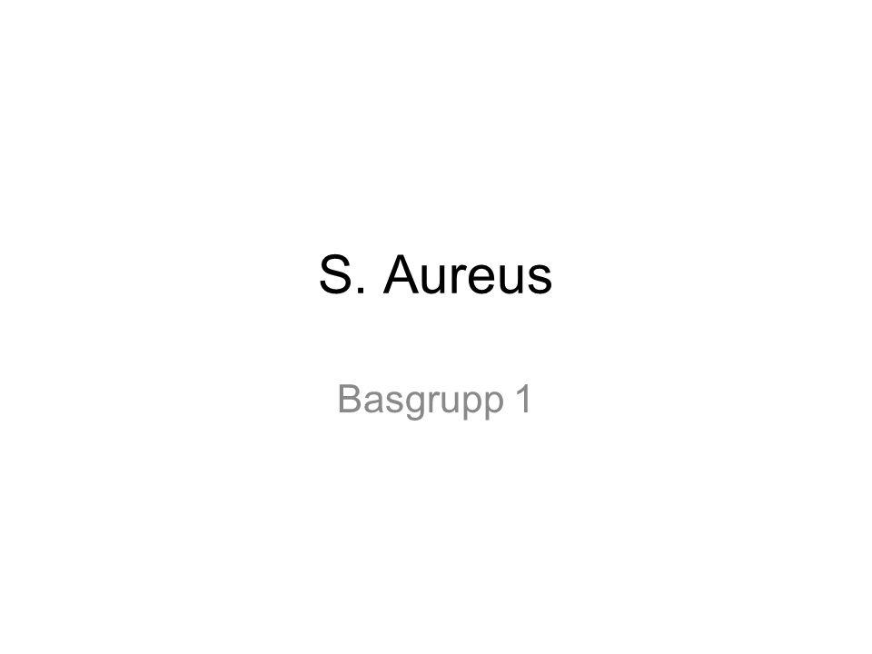 S. Aureus Basgrupp 1