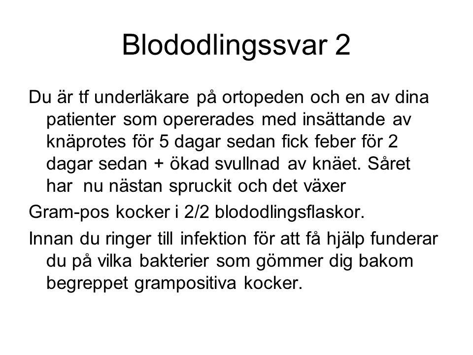 Blododlingssvar 2