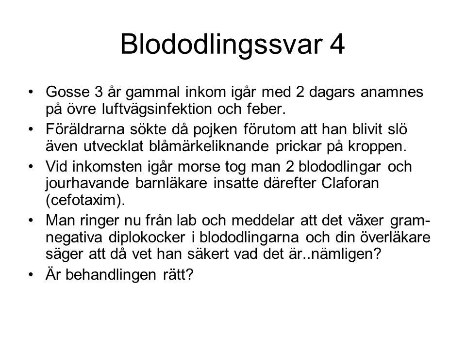Blododlingssvar 4 Gosse 3 år gammal inkom igår med 2 dagars anamnes på övre luftvägsinfektion och feber.