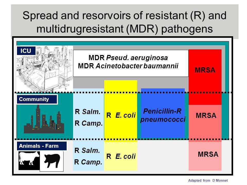 MDR Acinetobacter baumannii