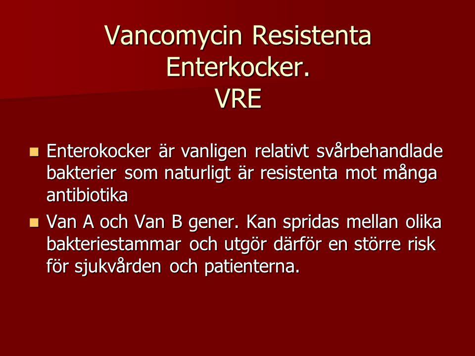 Vancomycin Resistenta Enterkocker. VRE