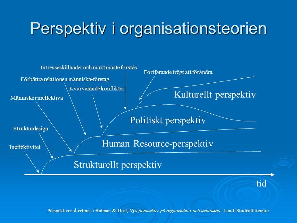 Perspektiv i organisationsteorien