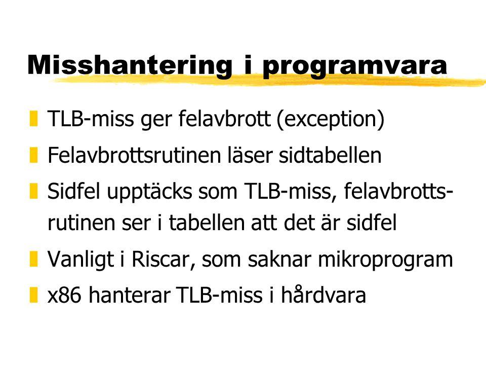 Misshantering i programvara
