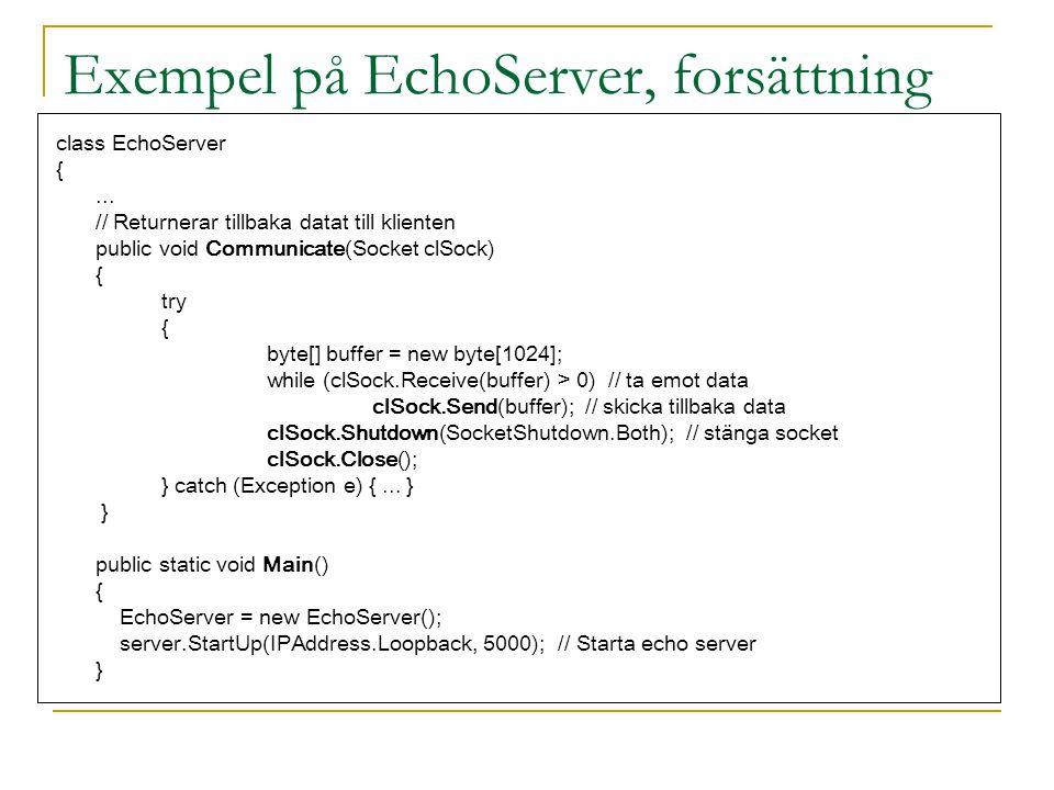 Exempel på EchoServer, forsättning