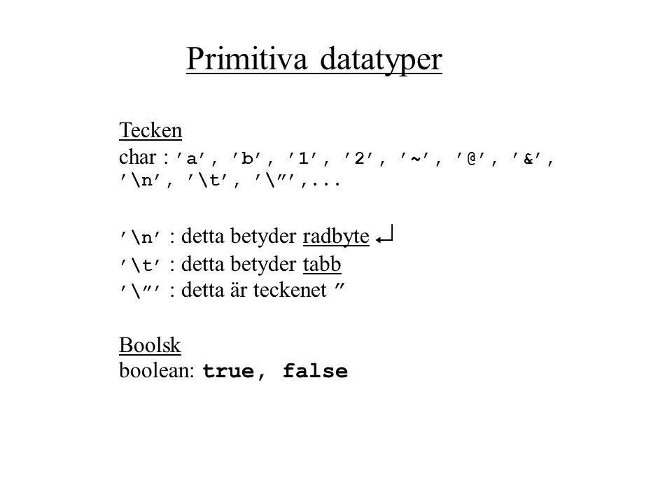 Primitiva datatyper Tecken
