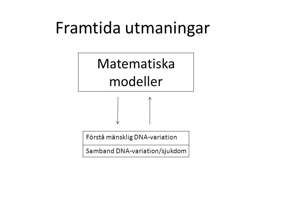 Framtida utmaningar Matematiska modeller Förstå mänsklig DNA-variation
