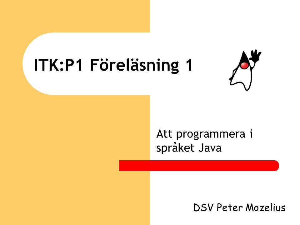 Att programmera i språket Java