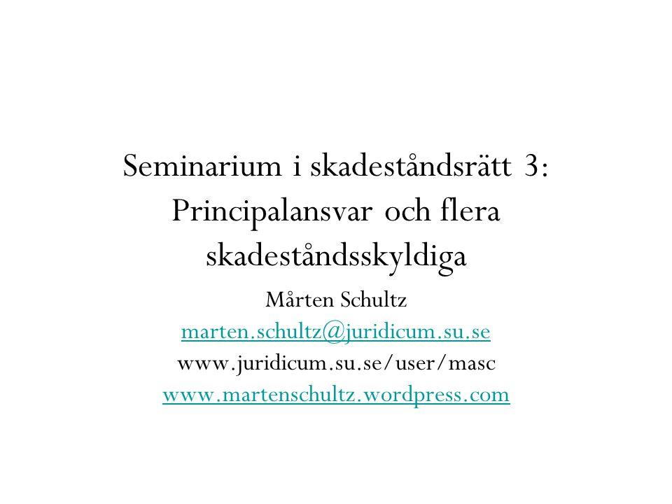Seminarium i skadeståndsrätt 3: Principalansvar och flera skadeståndsskyldiga