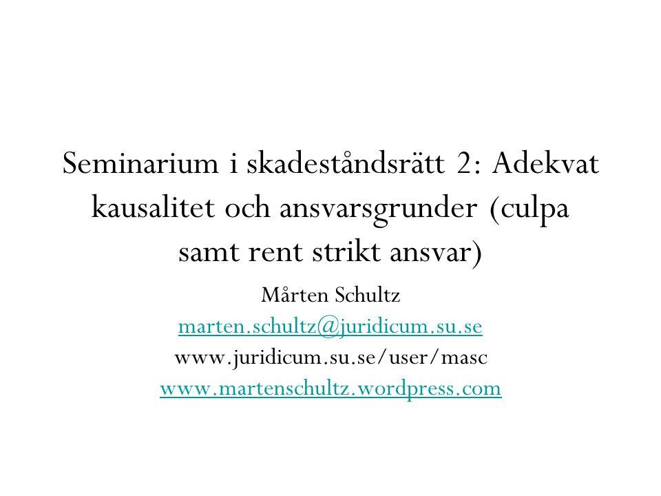 Seminarium i skadeståndsrätt 2: Adekvat kausalitet och ansvarsgrunder (culpa samt rent strikt ansvar)