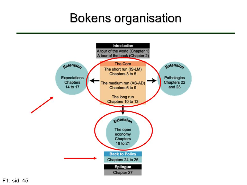 Bokens organisation