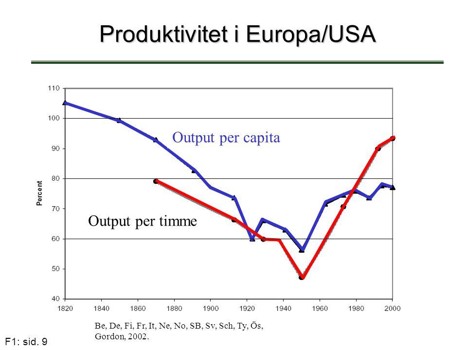 Produktivitet i Europa/USA