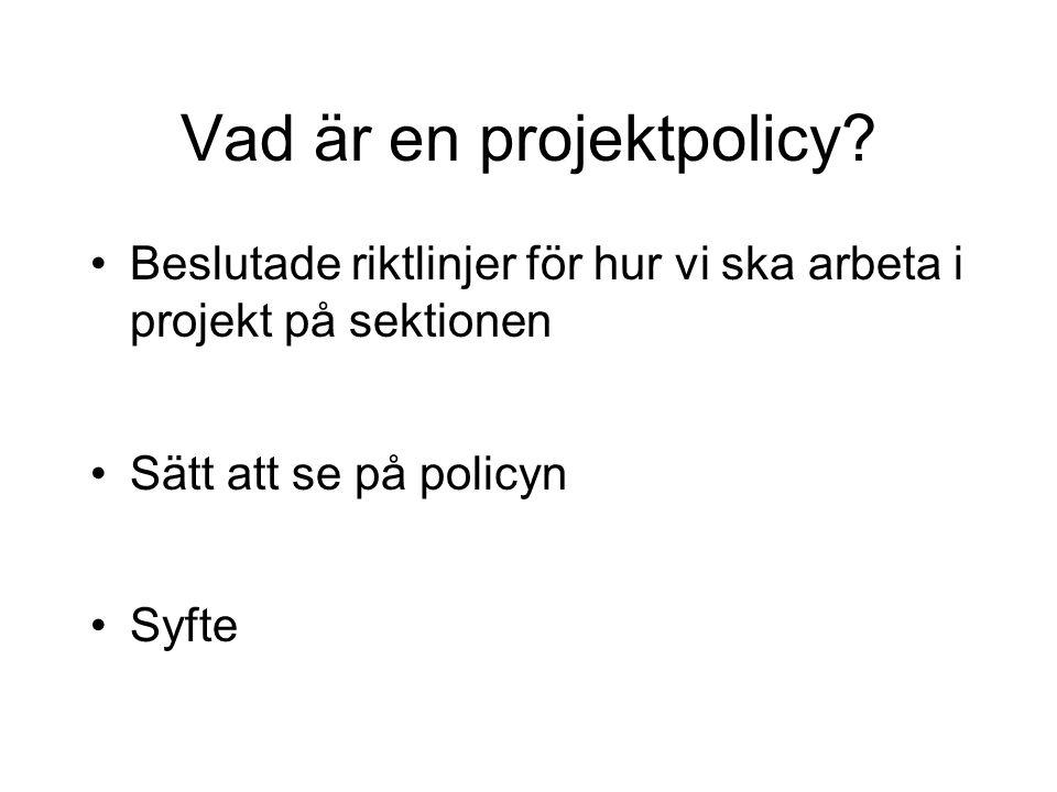 Vad är en projektpolicy