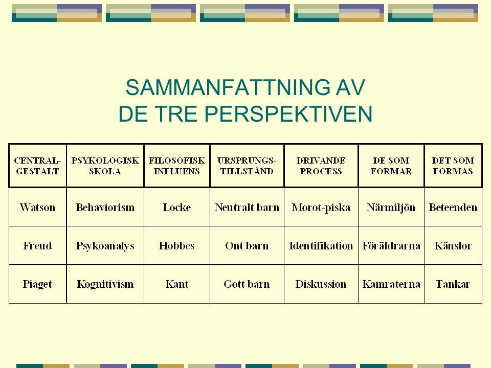 SAMMANFATTNING AV DE TRE PERSPEKTIVEN