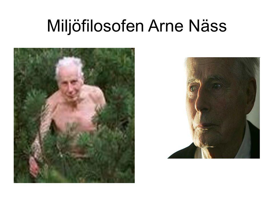 Miljöfilosofen Arne Näss