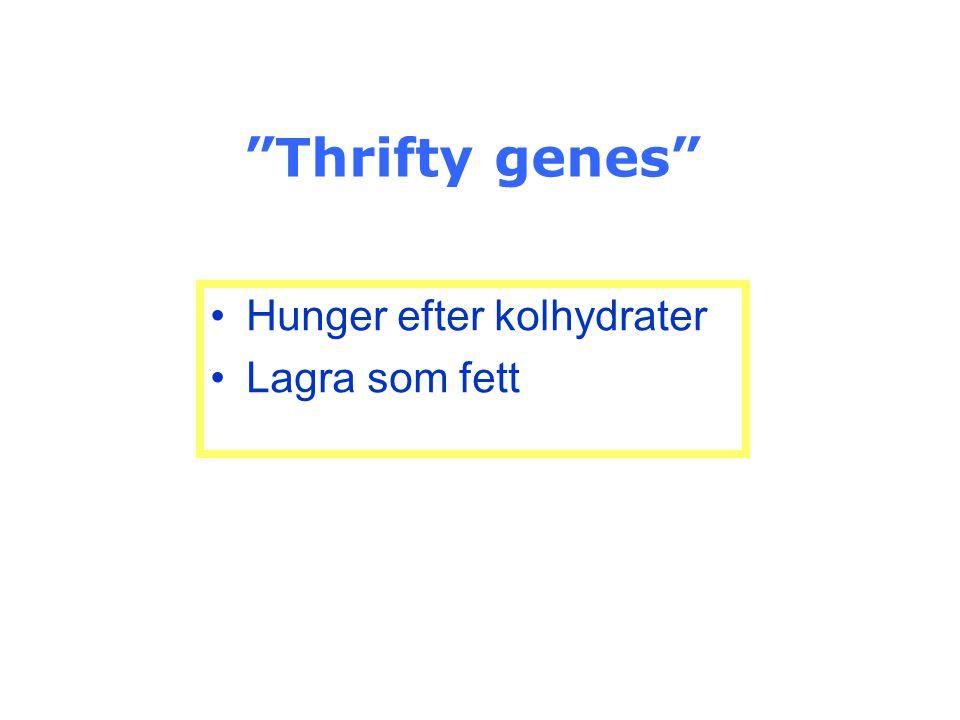 Thrifty genes Hunger efter kolhydrater Lagra som fett