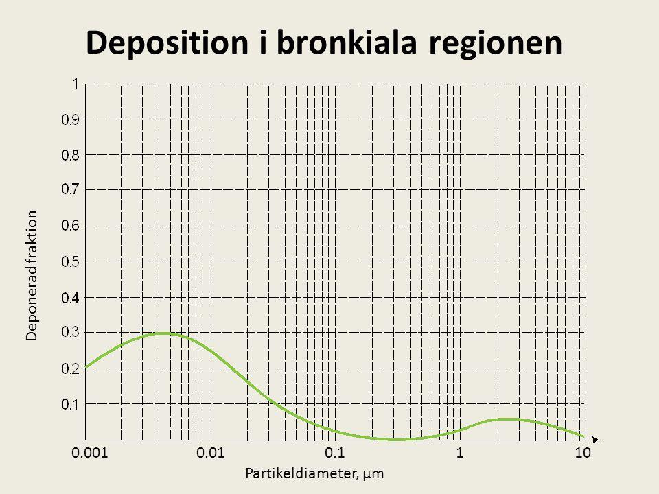 Deposition i bronkiala regionen