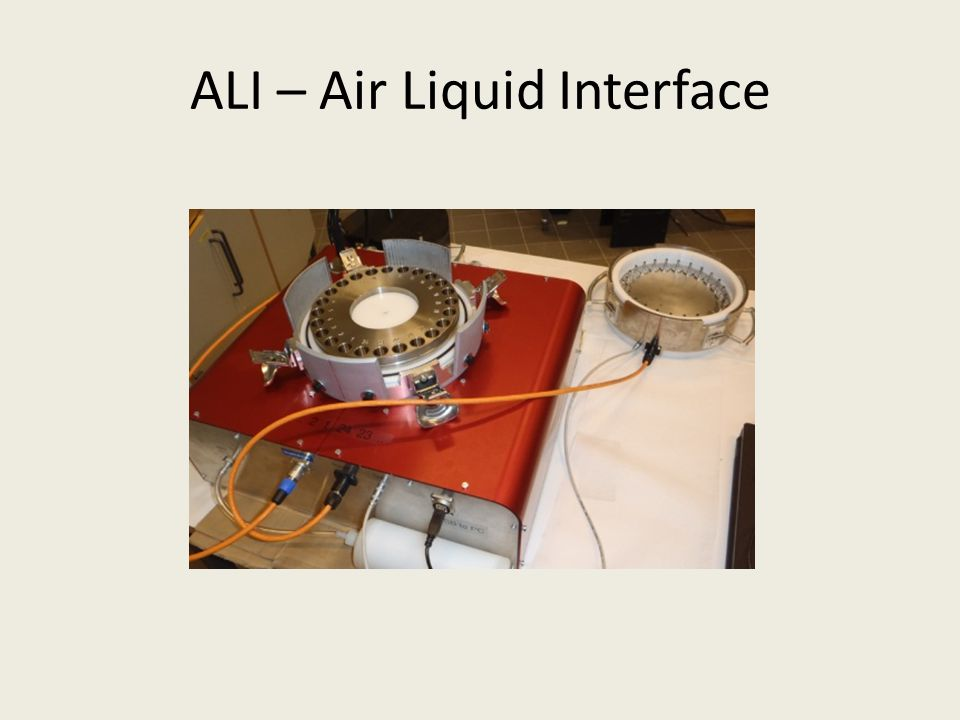 ALI – Air Liquid Interface