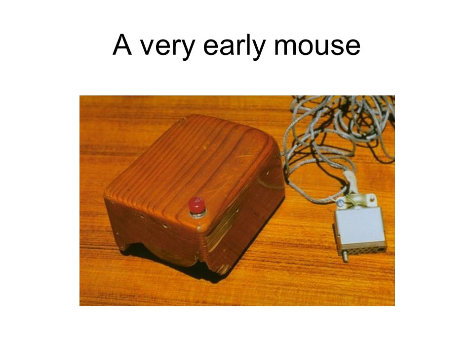 A very early mouse