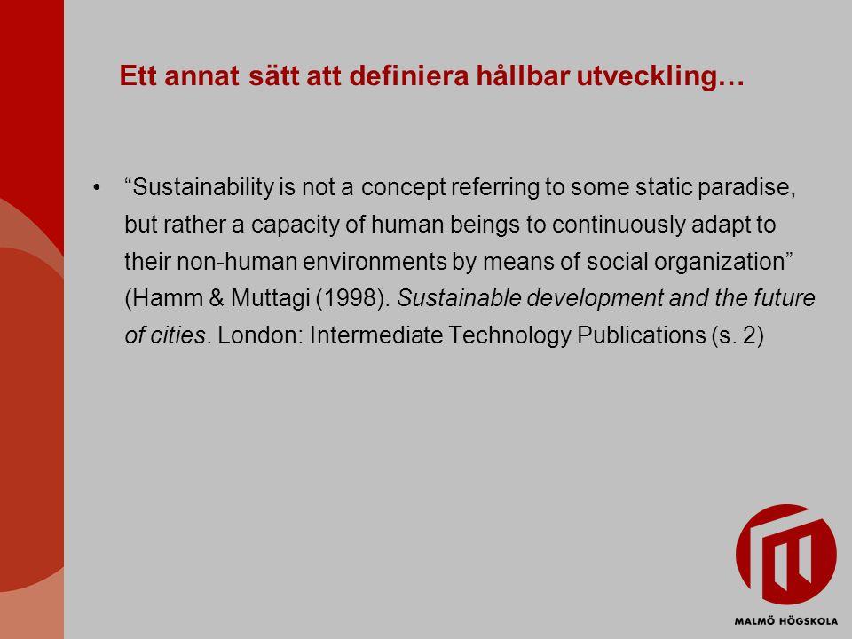 Ett annat sätt att definiera hållbar utveckling…