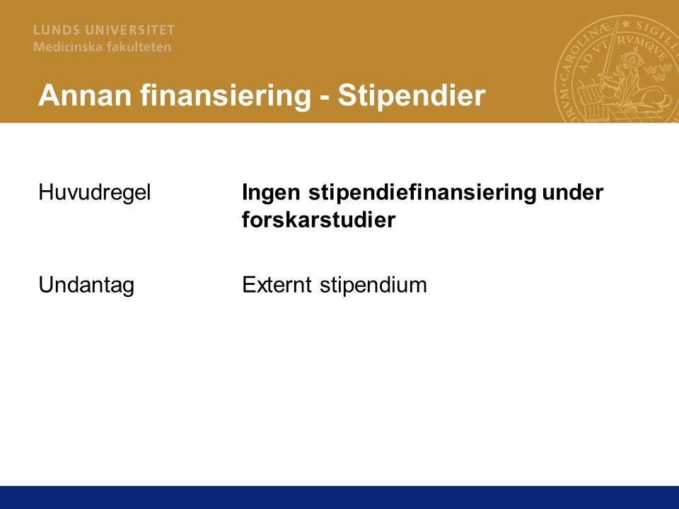 Annan finansiering - Stipendier