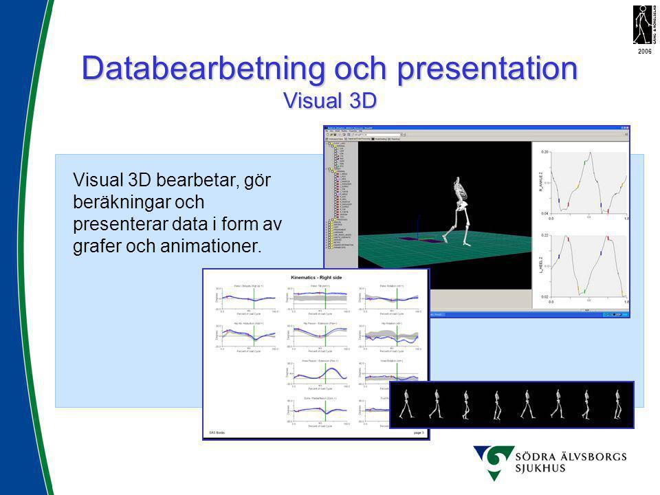 Databearbetning och presentation Visual 3D