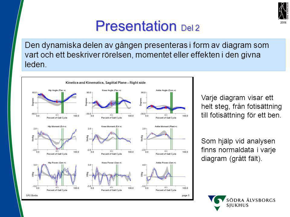 Kinetics and Kinematics, Sagittal Plane – Right side