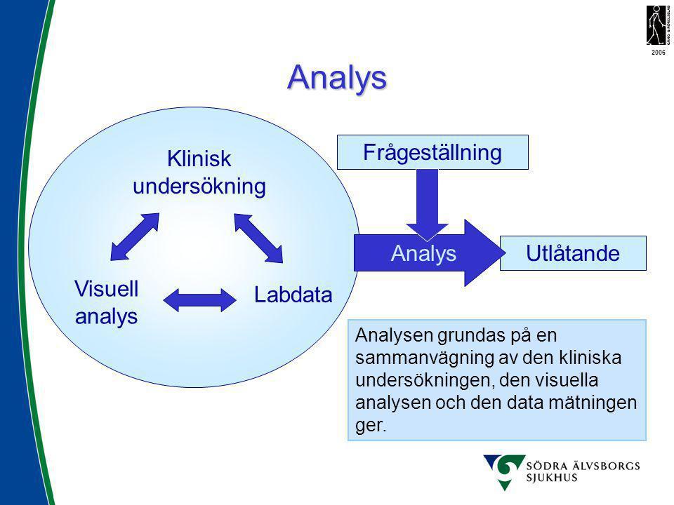 Analys Klinisk undersökning Labdata Visuell analys Frågeställning