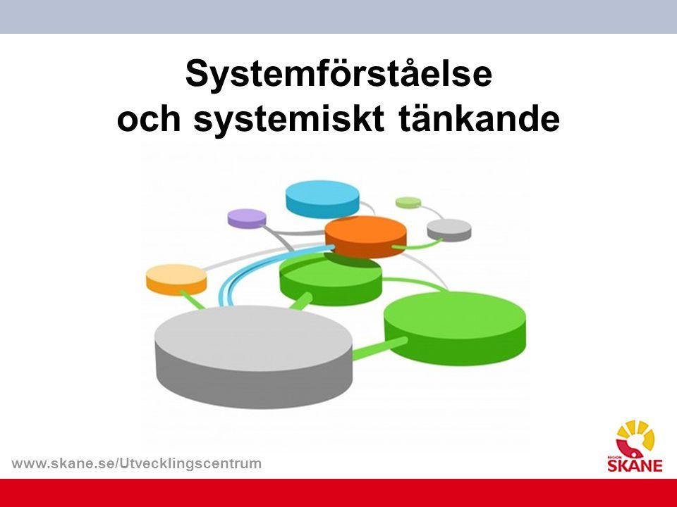 Systemförståelse och systemiskt tänkande
