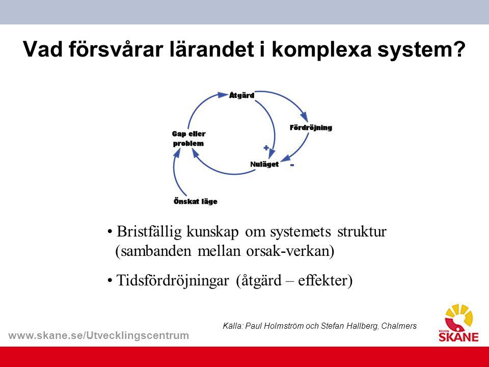 Vad försvårar lärandet i komplexa system