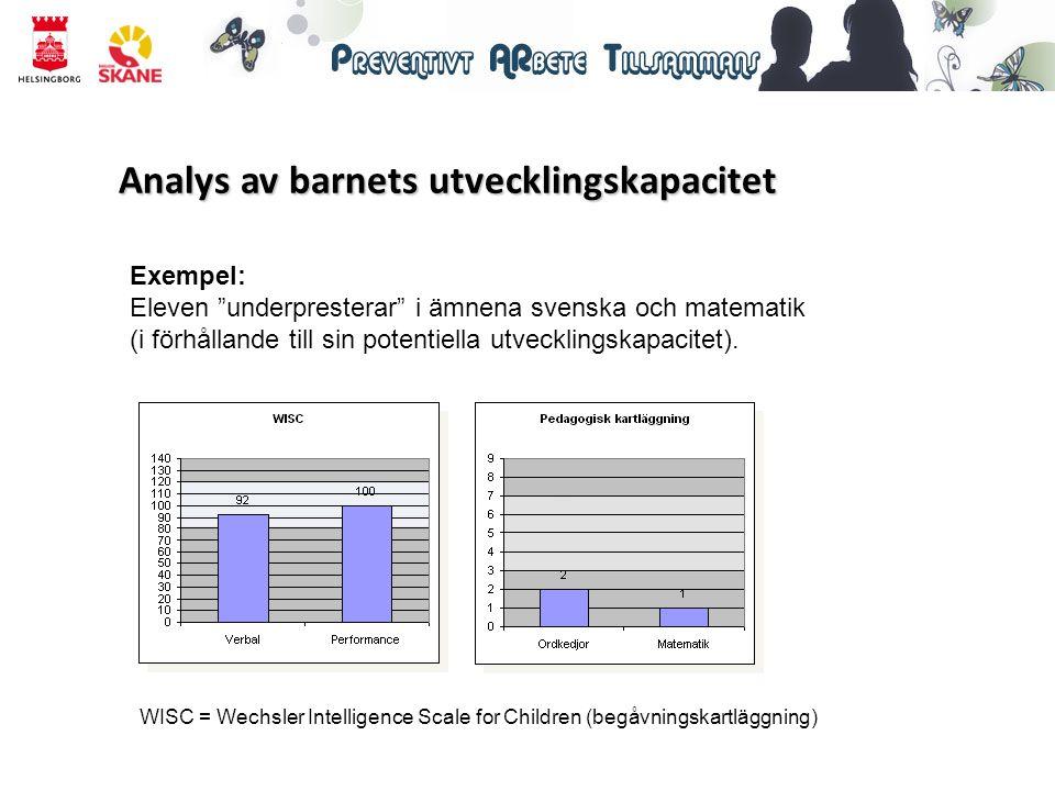 Analys av barnets utvecklingskapacitet