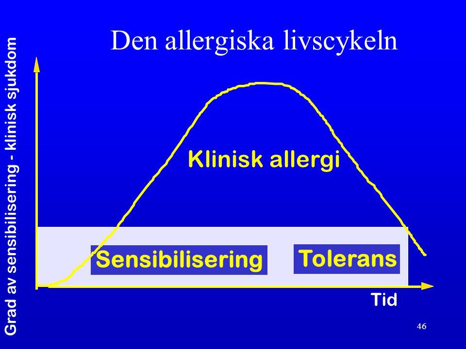 Den allergiska livscykeln