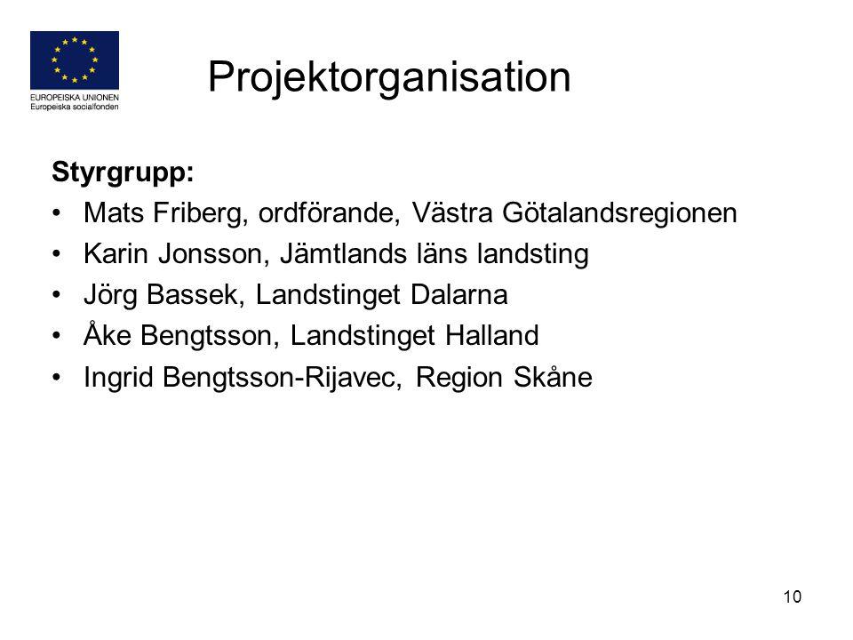 Projektorganisation Styrgrupp: