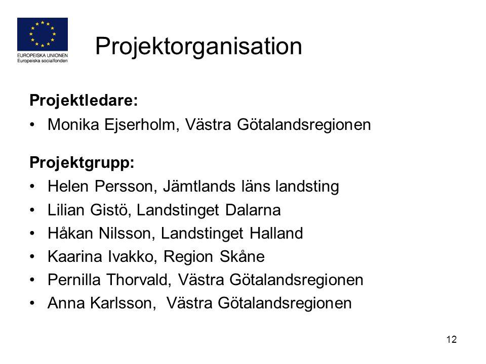 Projektorganisation Projektledare:
