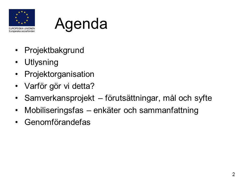 Agenda Projektbakgrund Utlysning Projektorganisation