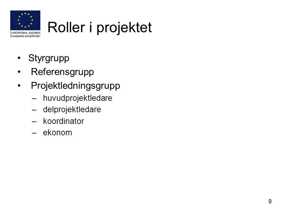 Roller i projektet Styrgrupp Referensgrupp Projektledningsgrupp