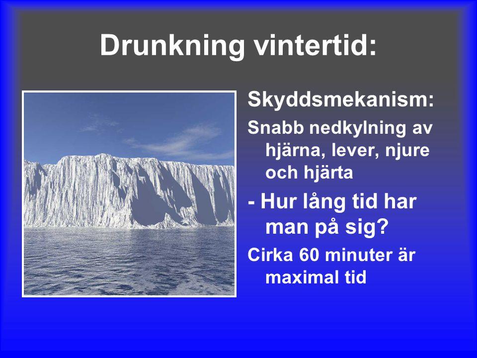 Drunkning vintertid: Skyddsmekanism: - Hur lång tid har man på sig