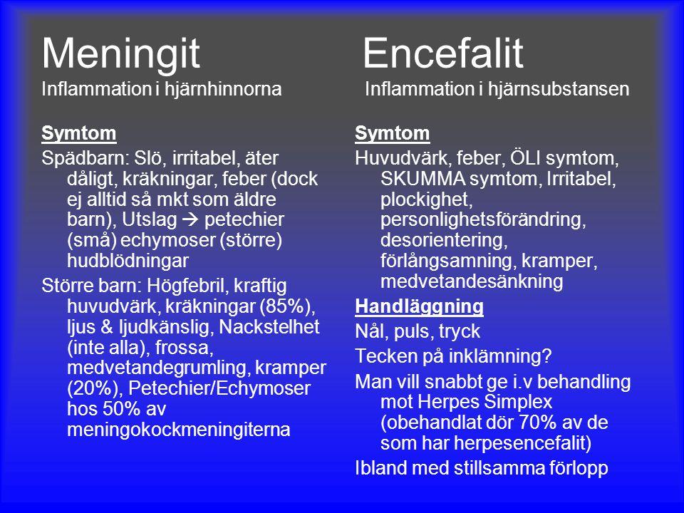 Meningit Encefalit Inflammation i hjärnhinnorna Inflammation i hjärnsubstansen