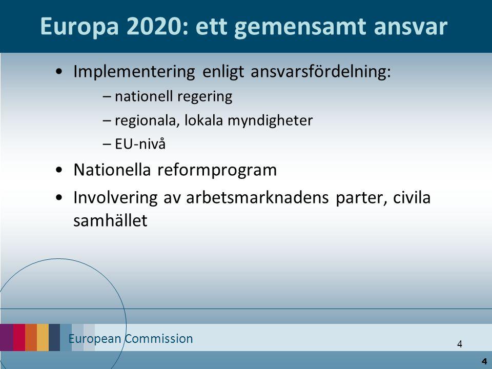 Europa 2020: ett gemensamt ansvar