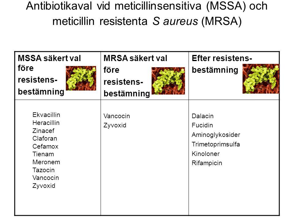 Antibiotikaval vid meticillinsensitiva (MSSA) och meticillin resistenta S aureus (MRSA)