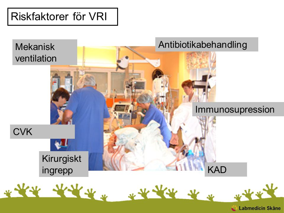 Riskfaktorer för VRI Antibiotikabehandling Mekanisk ventilation