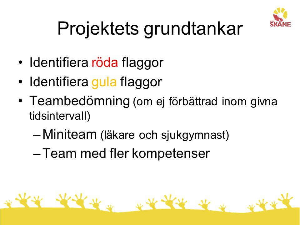 Projektets grundtankar