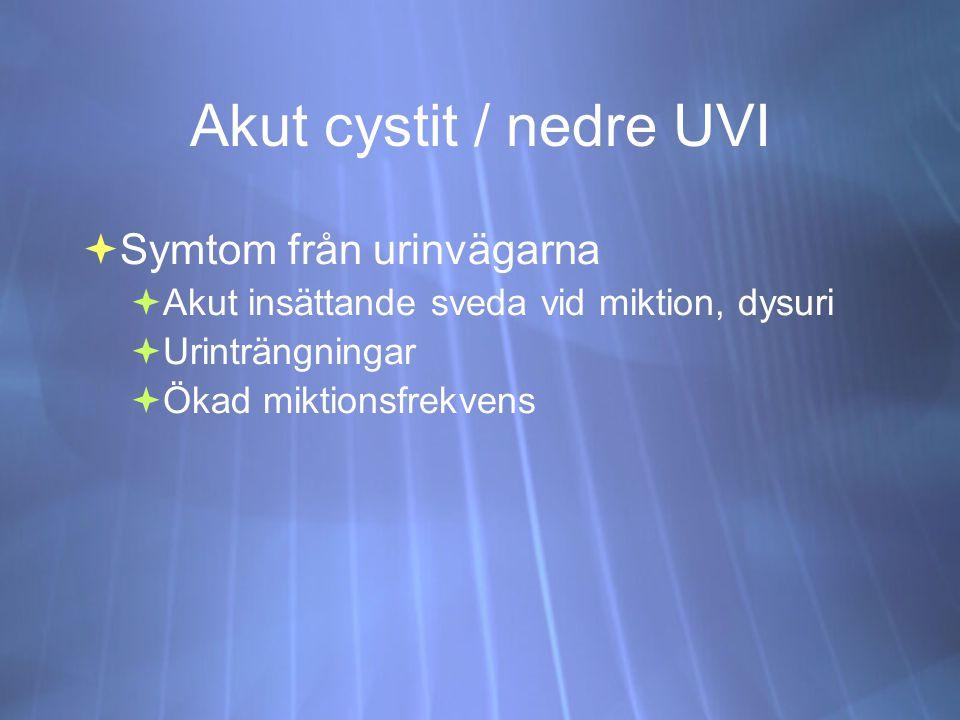 Akut cystit / nedre UVI Symtom från urinvägarna
