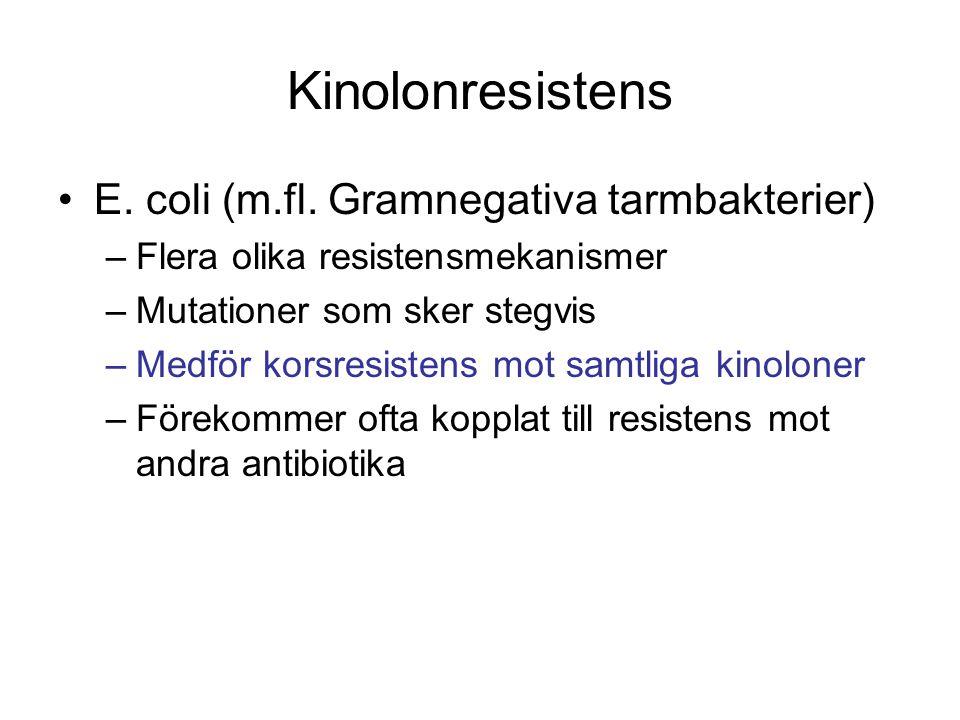 Kinolonresistens E. coli (m.fl. Gramnegativa tarmbakterier)