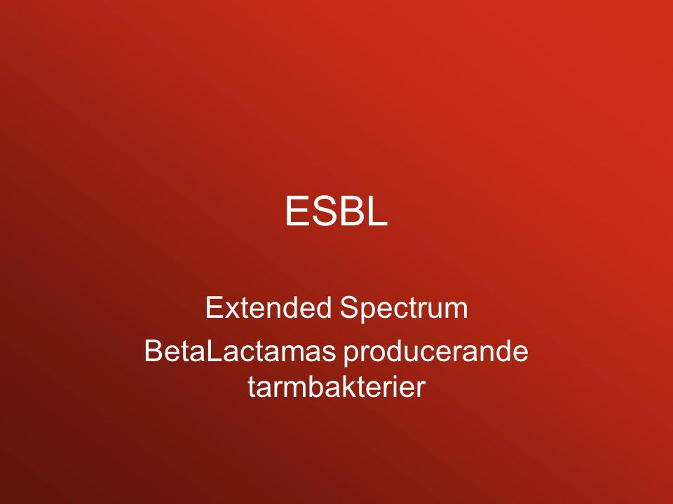 Extended Spectrum BetaLactamas producerande tarmbakterier
