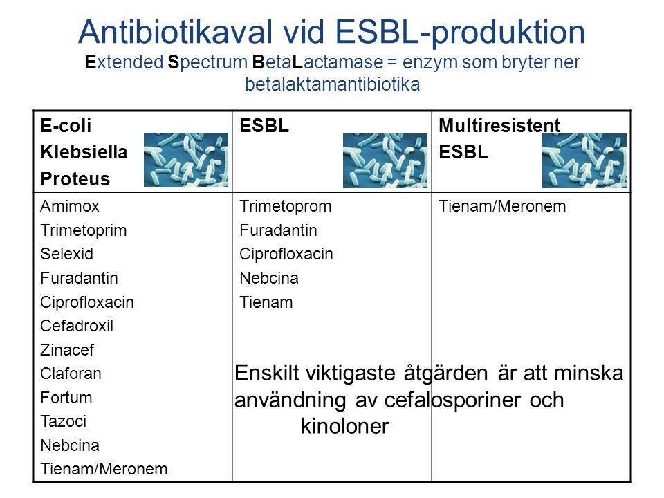 Antibiotikaval vid ESBL-produktion Extended Spectrum BetaLactamase = enzym som bryter ner betalaktamantibiotika